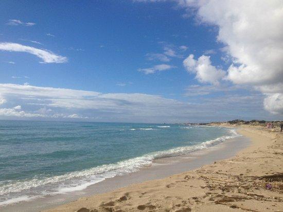 Masseria Bagnara Resort & Spa: spiaggia