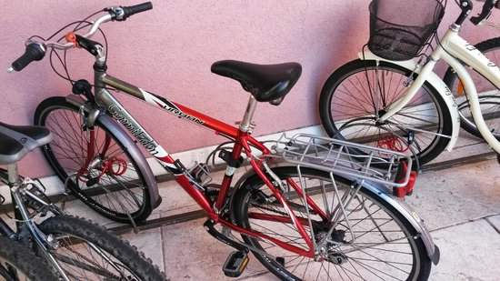 Albergo Garni Eden: One of the bikes available for use free of charge