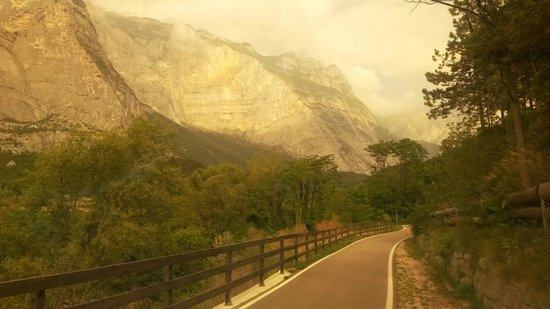 Albergo Garni Eden: One of many cycle tracks near hotel