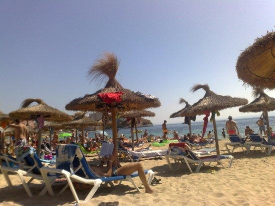 Hotel HSM Atlantic Park: spiaggia attrezzata