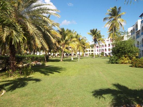 Starfish Jolly Beach Resort: Gardens