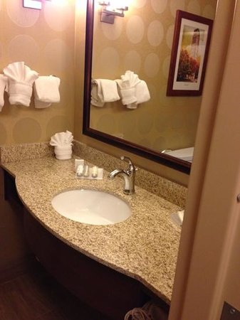 Hilton Garden Inn Ann Arbor : Nice, clean bathroom.
