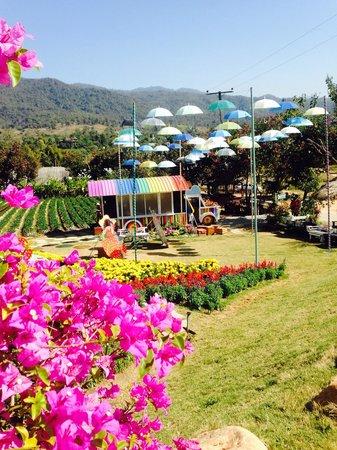 Pai See Tong Strawberry Farm Resort: Клубничная деревня с великолепным видом Пай . Там вы сможете сделать необыкновенные снимки. А та