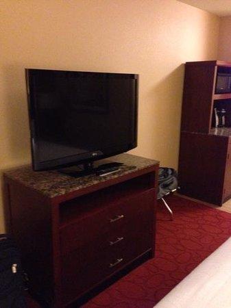 Hilton Garden Inn Ann Arbor: Large screen TV.