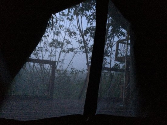 Khaosok Discovery Boutique Camps: 6am view from the tent