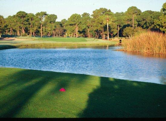 Turtle Creek Golf Club : #6