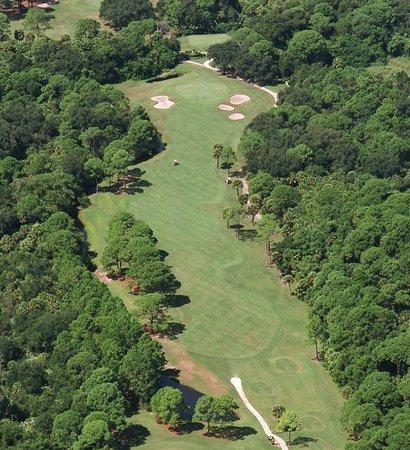 Turtle Creek Golf Club : #12