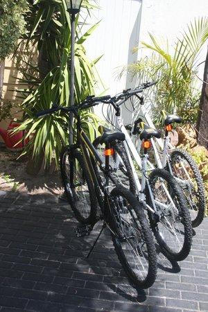 Birkenhead Manor Boutique Guest House: Rent a bike