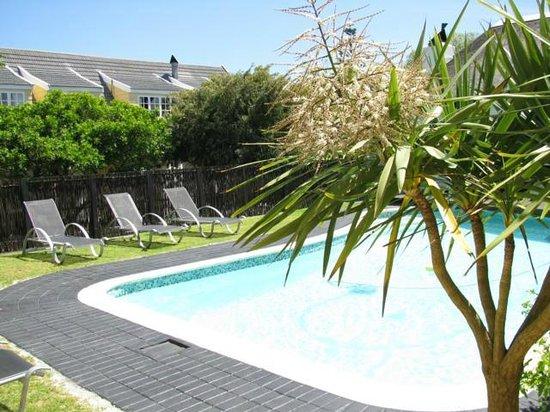 Birkenhead Manor Boutique Guest House: Pool