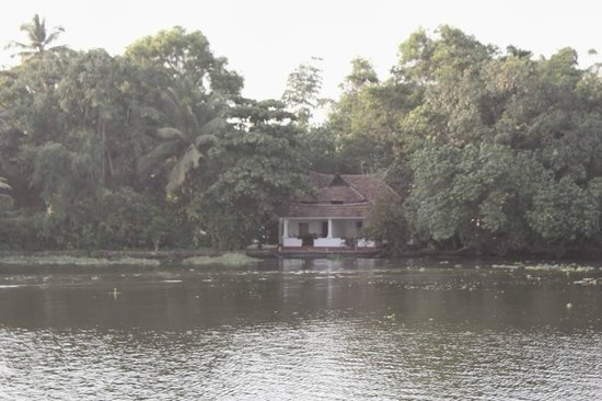 Our Land Island Backwater Resort: Cottages