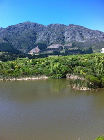 L'Ermitage Franschhoek Chateau & Villas: View from the balcony
