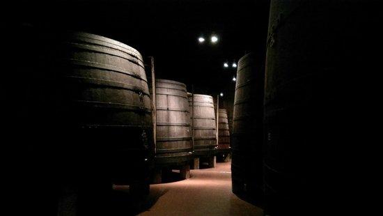 Porto Calem : Interior of hte Calem vinary