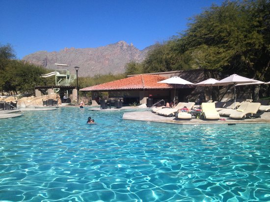 Westin La Paloma Resort and Spa : pool
