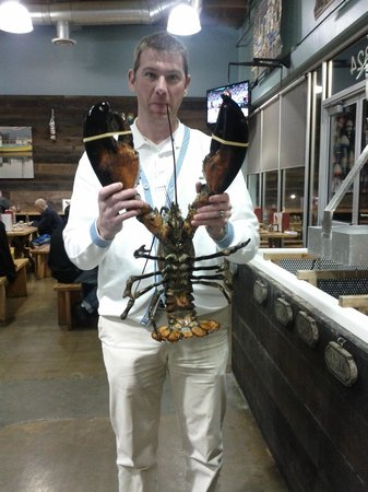 New England Lobster Market & Eatery : I wish I could eat this guy