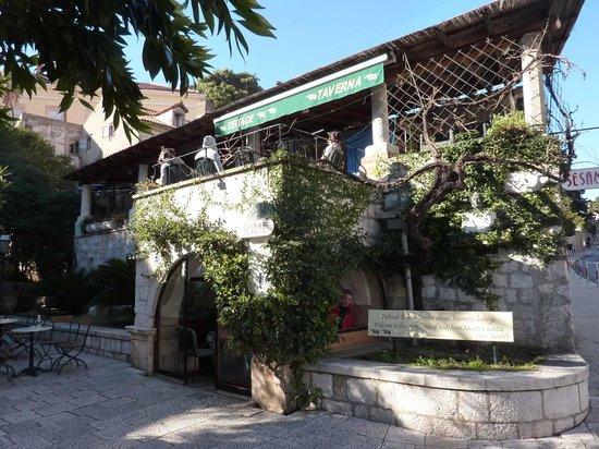 The Sesame Tavern : Sesame Restaurant Cafe Terrace
