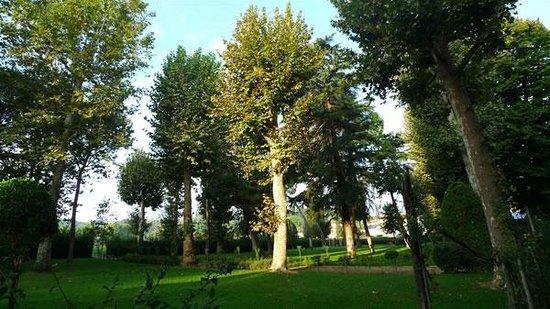 Istituto Suore S. Giovanni Battista - Villa Merlo Bianco: Parco