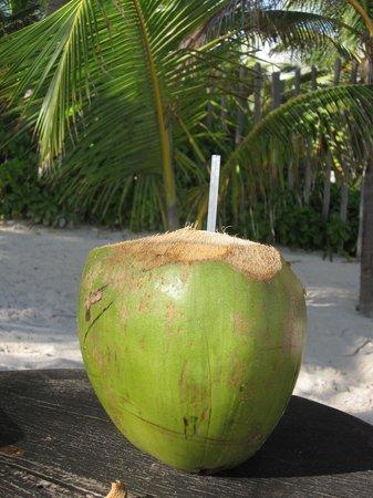 Cabanas La Luna: Coco!