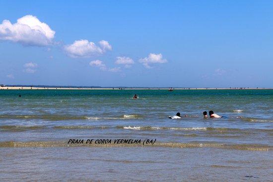Coroa Vermelha Beach: Rasa em alguns lugares.