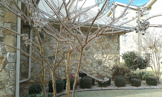 Homewood Suites by Hilton Oklahoma City-West: Ice covered trees