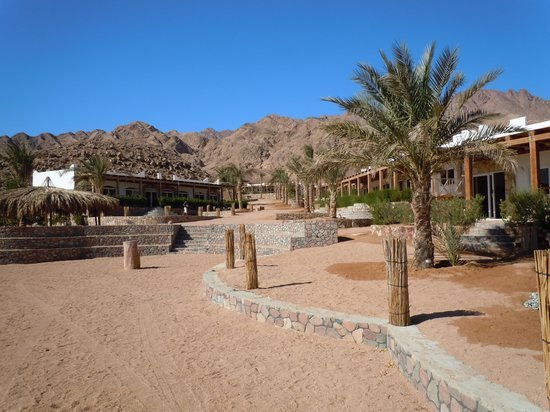 Canyon Estate Dahab Beach Hotel Residence : villaggio