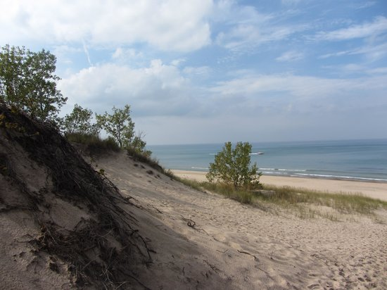 Indiana Dunes State Park: Trail 4/7 view
