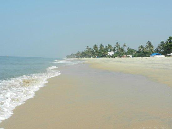 Palm Beach Resort: The best beach I've ever seen