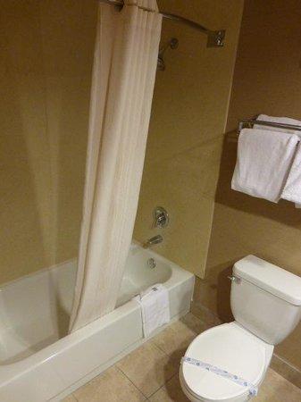 Comfort Suites: Shower