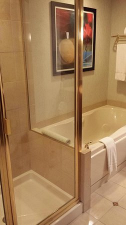 Ameristar Casino Hotel East Chicago: Shower and Garden Tub