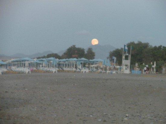 Minos Mare Hotel : beach