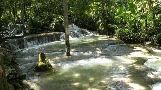 Dunn's River Falls and Park: Pools at the falls