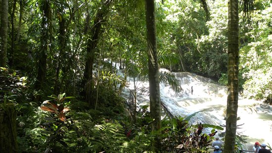 Dunn's River Falls and Park: The falls