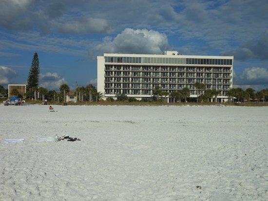 Holiday Inn Sarasota - Lido Beach: Holiday Inn