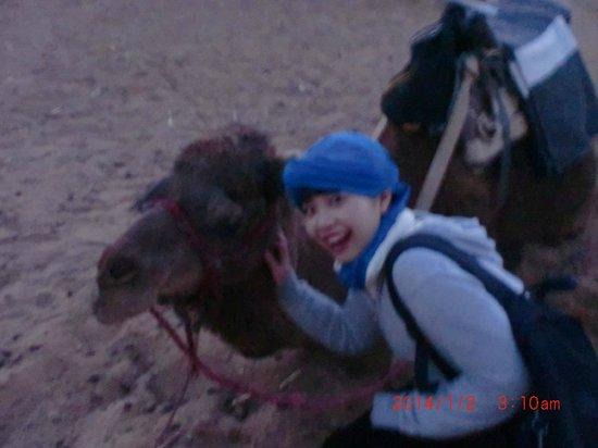 Moroccan Sahara : ラクダ。ベルベルの人がいろんなスカーフの巻き方教えてくれた。