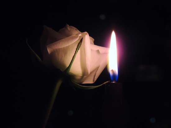 Equinox: Black Candle and White Rose