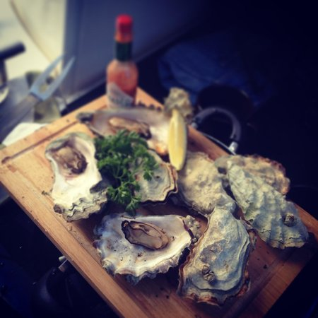 Blue Pacific Yacht Charters: Oysters