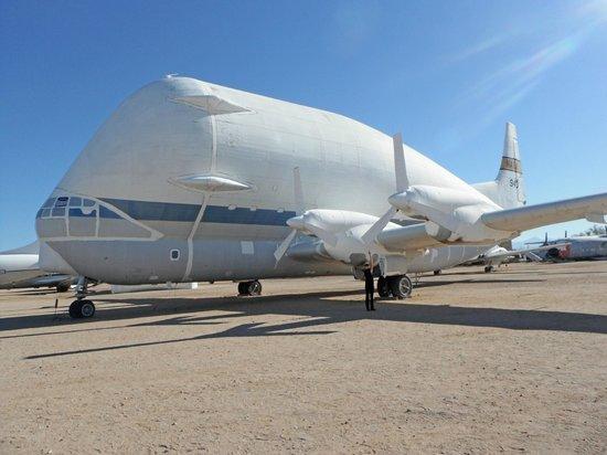 Pima Air & Space Museum: Super Guppy