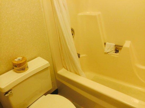 Super 8 White River Junction: Bathroom