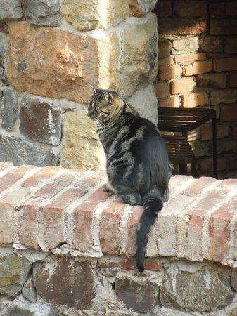 Castello di Amorosa : Lady Guenevere