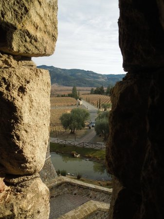 Castello di Amorosa : View from Tower