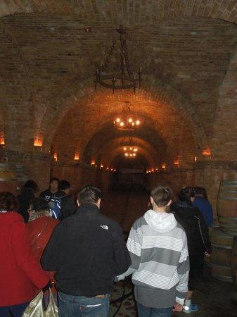 Castello di Amorosa : Underground tour