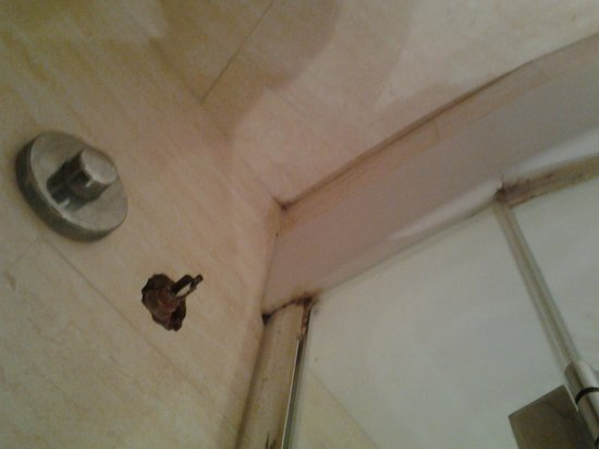 Eliseo Hotel : bas de douche