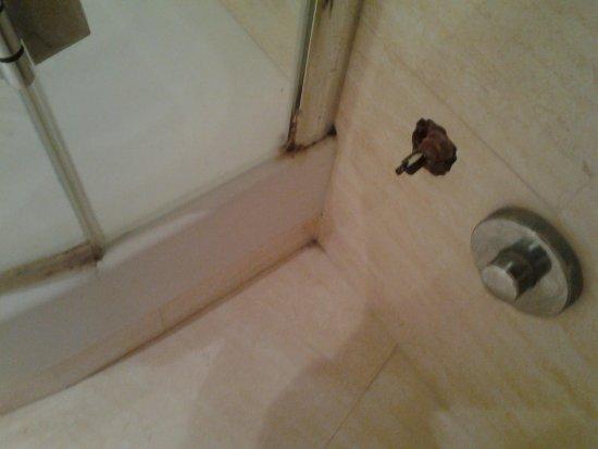 Hotel Eliseo: bas de douche