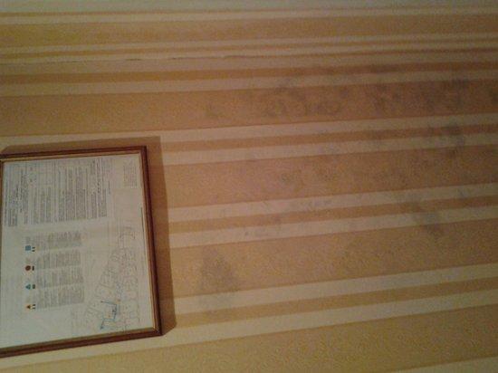 moisissures sur mur picture of hotel eliseo rome. Black Bedroom Furniture Sets. Home Design Ideas
