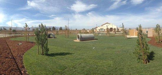 Yanks RV Resort : We have dog wash in our fenced dog park