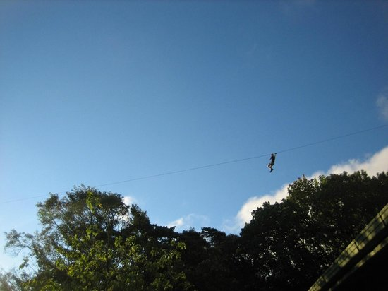 Monteverde Cloud Forest Lodge: Zipline overhead