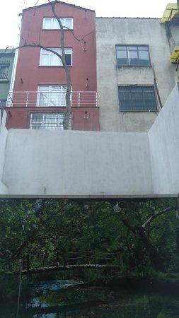 Ada Home Istanbul: Вид из номера на первом этаже