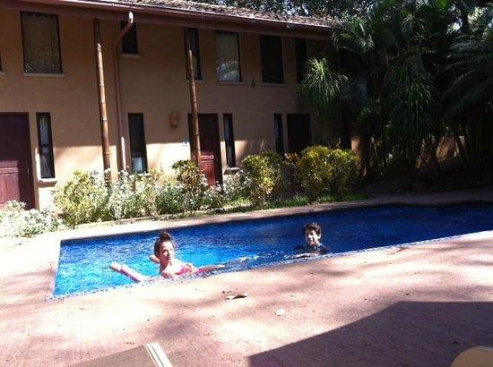 Tamarindo Blue Apartments: La piscina la mantienen muy limpia