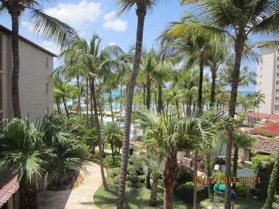 Hyatt Regency Aruba Resort and Casino : From room 459