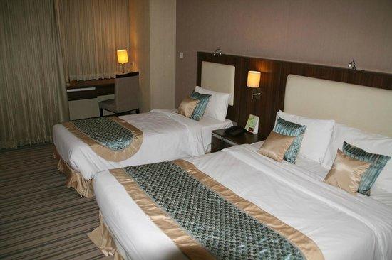 Parsian Enghelab Hotel: Zimmeransicht