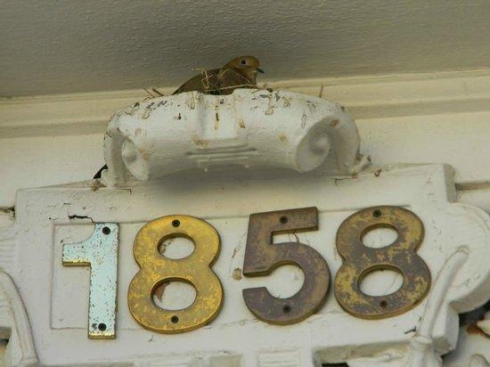 La Perla Hotel: La fecha de la casa